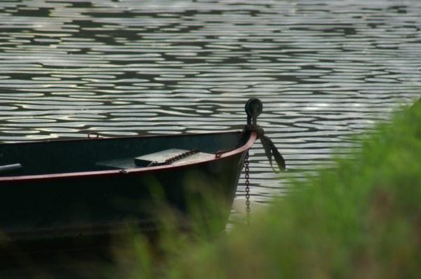 AAA Titre la nature au fil de l'eau